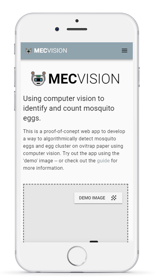 Mosquito Egg Computer Vision